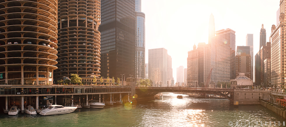 Chicago Sunlight