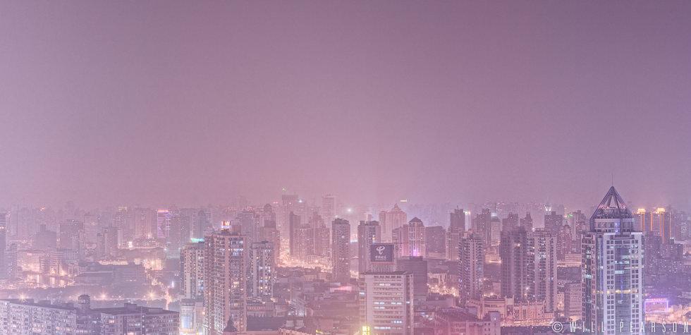 Shanghai Skyline Crop