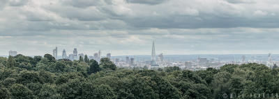 hampstead-heath-2012-crop-001